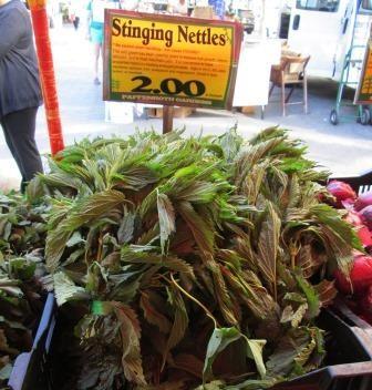 market nettles