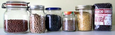 L to R: Santa Maria pinquitos, chickpeas, Midnight blacks, Castelluccio lentils, yellow Indian lentils, Domingo rojo reds
