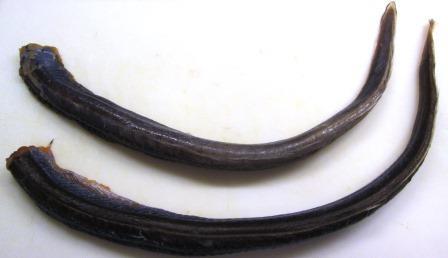 eels 2